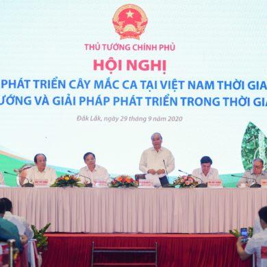 Thủ tướng Nguyễn Xuân Phúc nêu hàng loạt vấn đề về trồng và tiêu thụ mắc ca